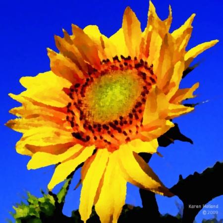 sunfire2o