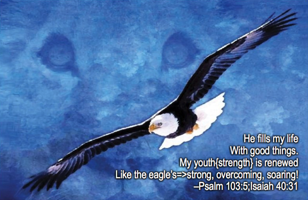 Renewed Like The Eagle Touching The King